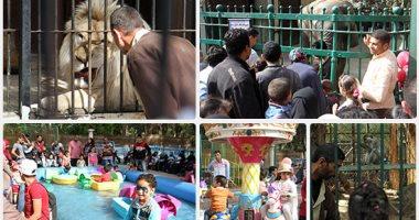 Photo of حديقة الحيوان تستقبل 70 ألف زائر باحتفالات أعياد الربيع حتى الآن