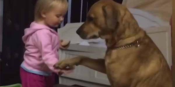 فيديو طريف لمرح الاطفال مع الكلب