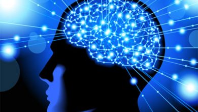 خلايا المخ