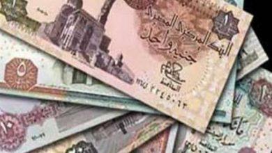 Photo of السيولة المحلية لمصر ترتفع 73 مليار جنيه عند مستوى تاريخي جديد
