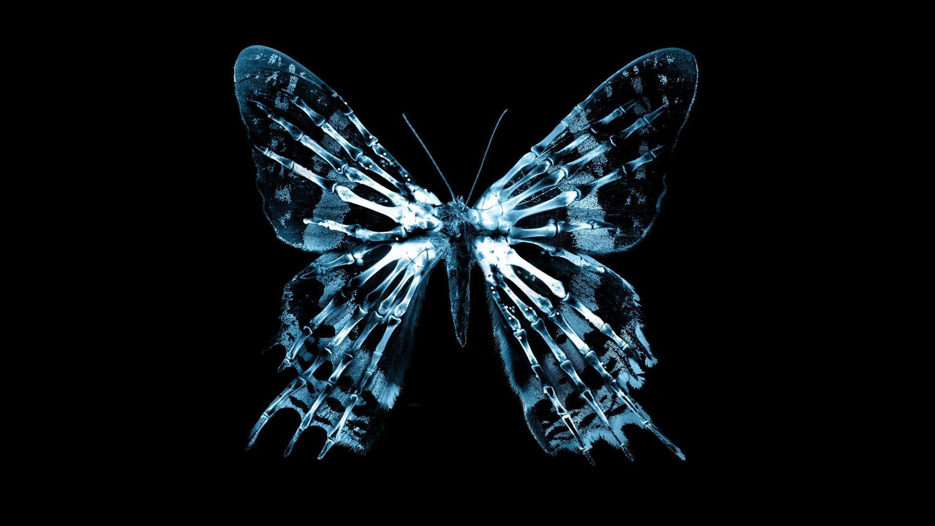 تأثير الفراشة على فيروس كورونا