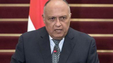 Photo of وزير الخارجية المصري: نرفض استمرار التدخلات التركية فى المنطقة العربية