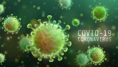 Photo of دراسة حديثة تكشف أسباب انتشار فيروس كورونا أسرع من الإنفلونزا العادية
