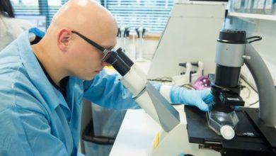 Photo of «الصحة» تكشف شروط وموانع المتطوعين لتجارب لقاح فيروس كورونا
