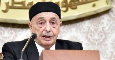 Photo of رئيس البرلمان الليبى يبحث فى القاهرة مبادرته لحل الأزمة الليبية