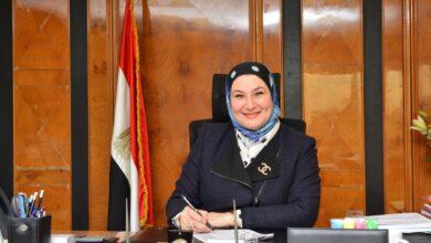 Photo of البنك المصري لتنمية الصادرات يطلق خدمة الـIBAN للتحويلات الدولية