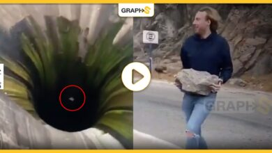 Photo of فيديو.. القبض على شاب ألقى صخرة داخل قمع عظيم لتصوير مقطع «تيك توك»