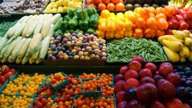 Photo of ارتفاع صادرات الخضر والفاكهة لـ 4.8 مليون طن