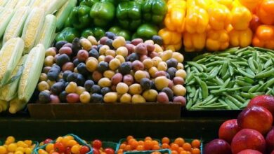 Photo of 5 جنيه للبامية و3 جنيه للجوافة .. أسعار الخضروات والفاكهة في سوق العبور اليوم الأحد