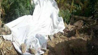 Photo of فلاح يقتل شقيقه في الفيوم بسبب الأسبقية على ري الأرض