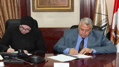 Photo of وزيرا التجارة والزراعة يصدران قرارًا مشتركًا بشأن تداول «القطن الزهر» 2021/2020