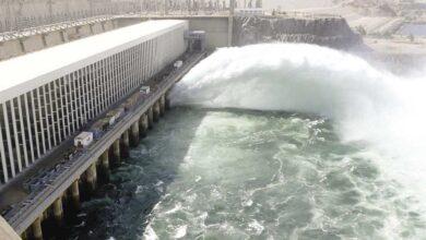 Photo of الرى: فيضان النيل مبشر والسد العالى آمن