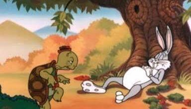 Photo of شاهد.. سباق بين سلحفاة وأرنب يحقق «القصة الأسطورية»