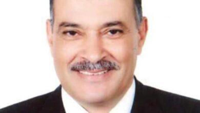 Photo of السيد: استمرار ارتفاع أسعار الدواجن حتى الاسبوع الأول من رمضان والفراخ البيضاء بـ35 جنيه