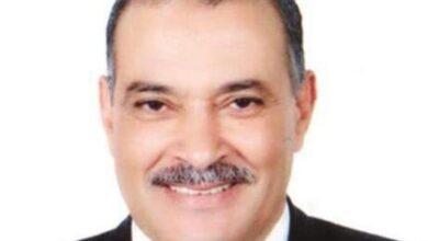 Photo of عبدالعزيز السيد: أتوقع استمرار انخفاض أسعار الدواجن حتى أسبوعين مقبلين