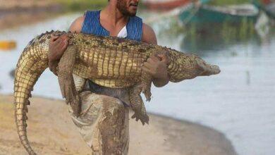 Photo of بعد ظهوره مع «تمساح».. الفنان محمد رمضان يتصدر تريند جوجل