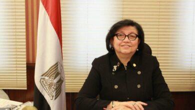 Photo of لميس نجم: نعمل وفق استراتيجية الدولة لتطوير العشوائيات وتحقيق التنمية المستدامة