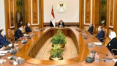 Photo of الرئيس السيسي يوجه بصرف معاش ثابت لمصابي حادث قطاري سوهاج