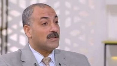 Photo of حاتم نجيب: استقرار أسعار الخضروات والفاكهة في ثاني أيام عيد الأضحى