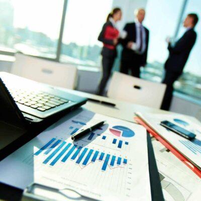 مجالات إدارة الأعمال في مصر