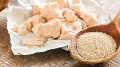 Photo of الخميرة والعسل الاسود لزيادة الوزن وأطعمة أخرى تزيد الوزن بفعالية