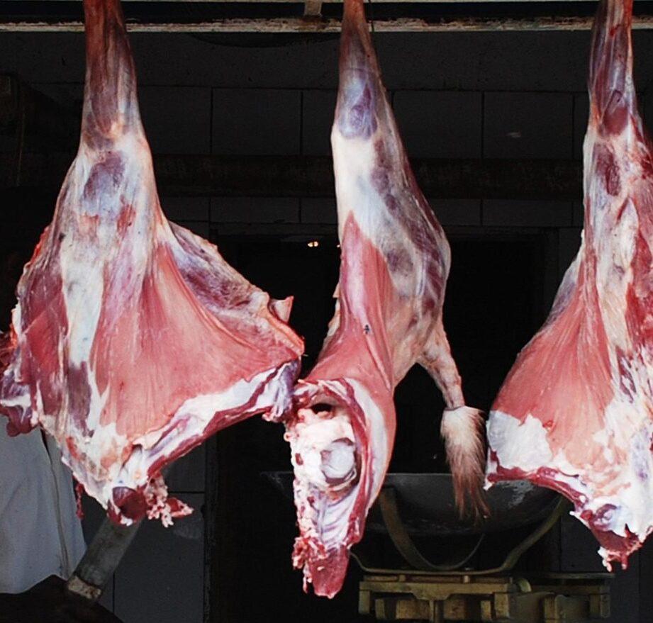 استخدام كل قطعة لحم
