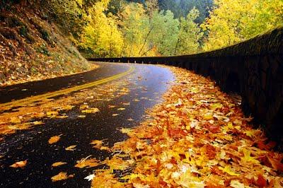 أغاني الخريف